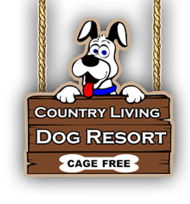 Country Living Dog Resort